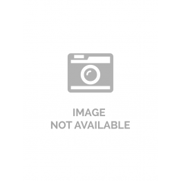 HEBITO Obraz drukowany Kocur - Jenny Downing 115 x 55 cm - 1 el.