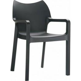 RESOL Krzesło Dionisio Black Arm chair