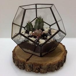 HEBITO Doniczka geometryczna, szklana, świecznik  - Dodekaedr