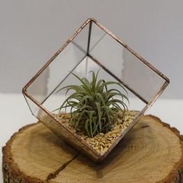 HEBITO Doniczka geometryczna, szklana, świecznik - Sześcian 2